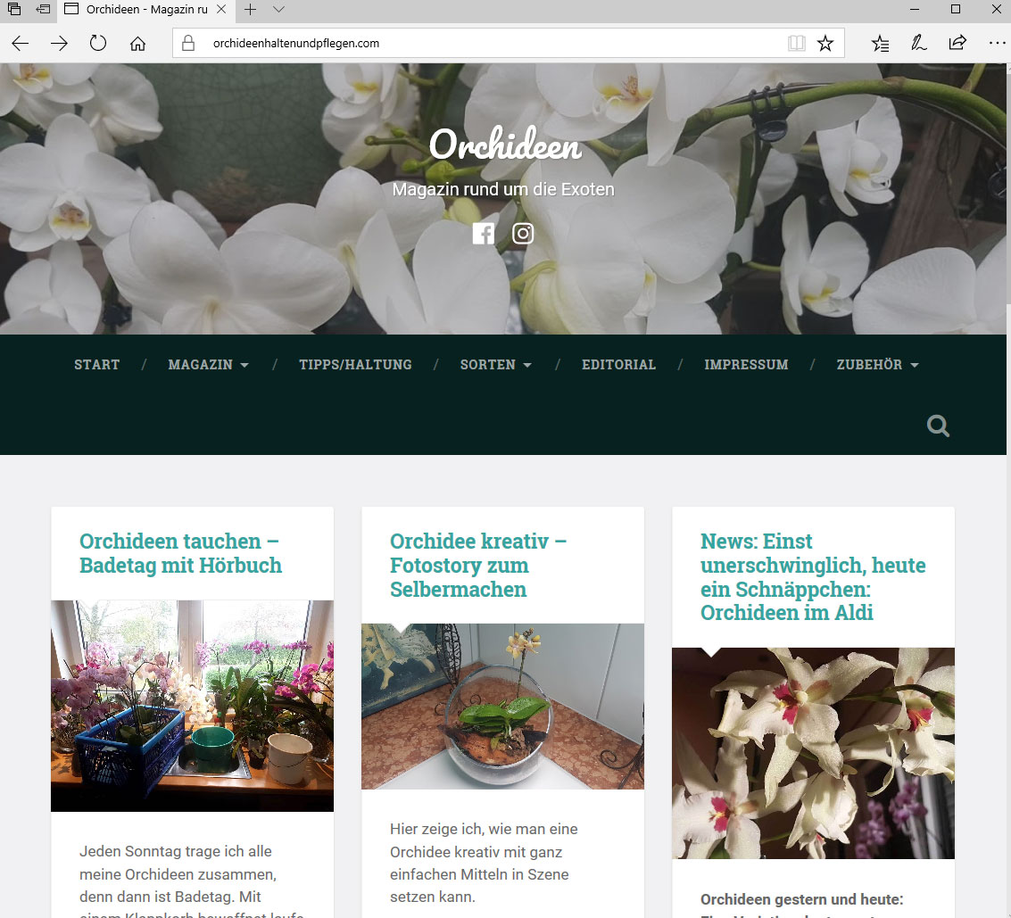 Screenshot von Website zum Thema Orchideen