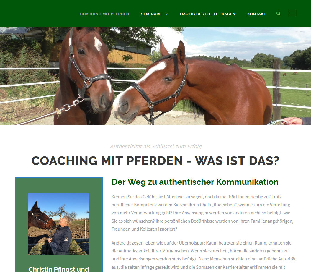 Website von Christin Pfingst